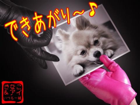 XS合成アイ&手袋