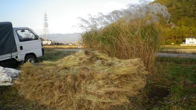 2011-11-1田んぼ2
