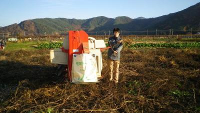 2011-11-22大豆2
