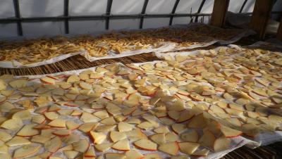 2012-1-10干しりんご