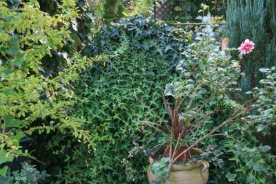 2009-10-27_10.jpg