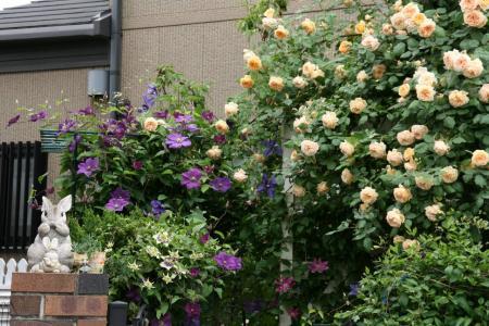 2011-05-26_19.jpg