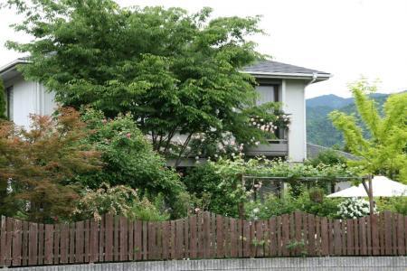 2011-05-27_126.jpg