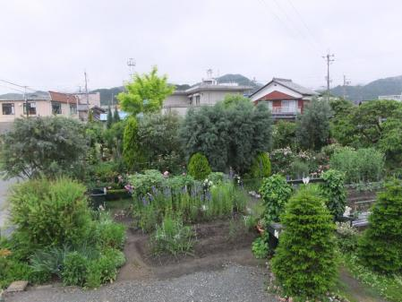 2011-05-28_162.jpg