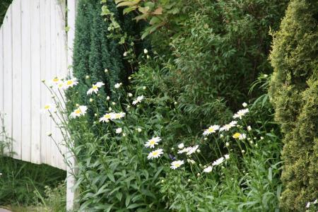 2011-06-22_90.jpg