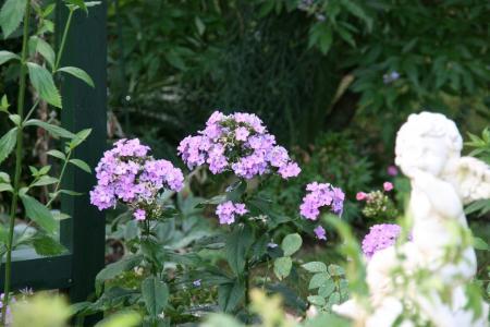 2011-07-24_04.jpg