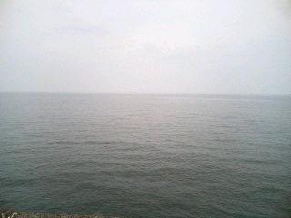 画像 155