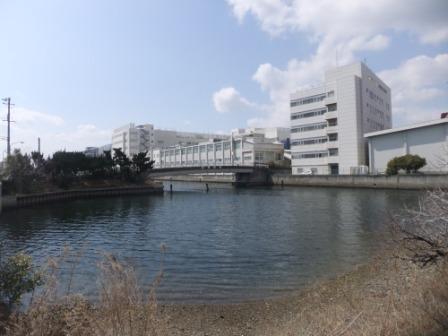 2011_03110011.jpg