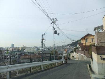 2011_03120003.jpg