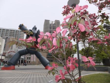 2011_05060037.jpg