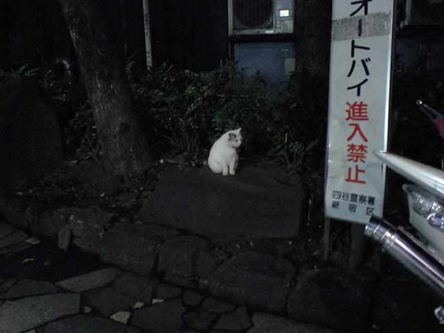 09_08_03_01.jpg