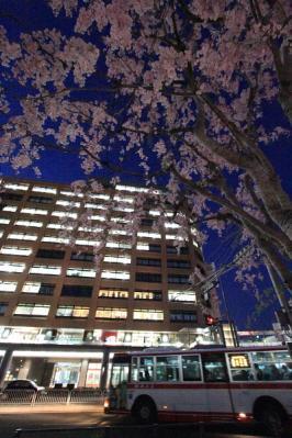 2011-04-13-18-54-19.jpg