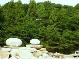 神社の森をバックに設置された桃の石