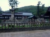 神社は烈しい風雨に包まれている、