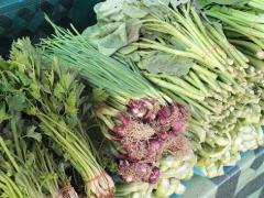 ブルネイ市場