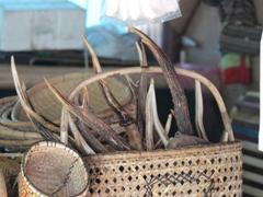 ブルネイ市場27