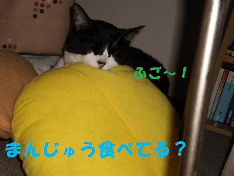 001_convert_20090907225747.jpg