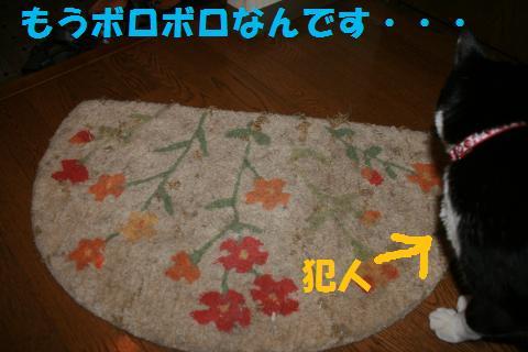 001_convert_20091005211552.jpg