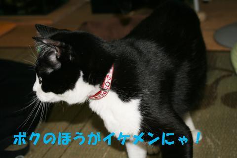 002_convert_20091013224703.jpg