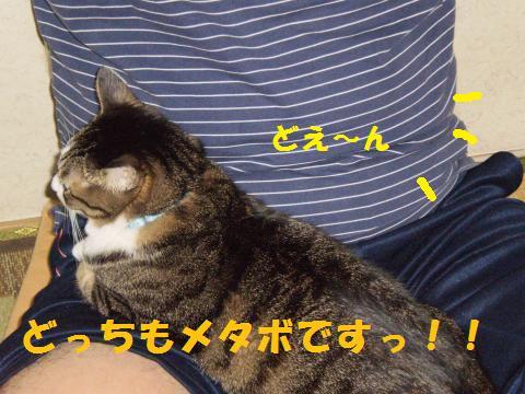 003_convert_20091012224703.jpg