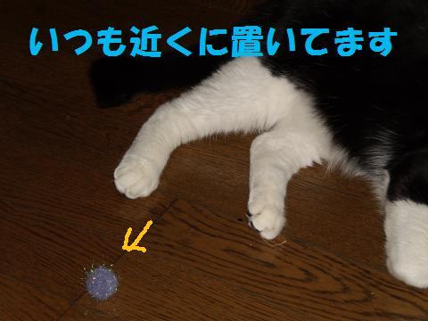 004_convert_20090915225214.jpg