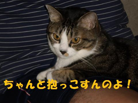 005_convert_20091012224810.jpg