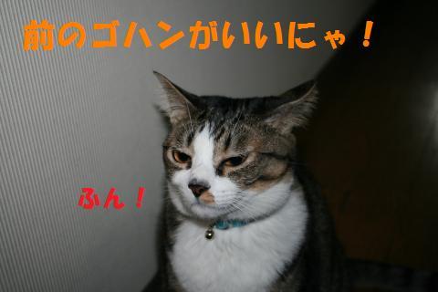 006_convert_20091014222339.jpg