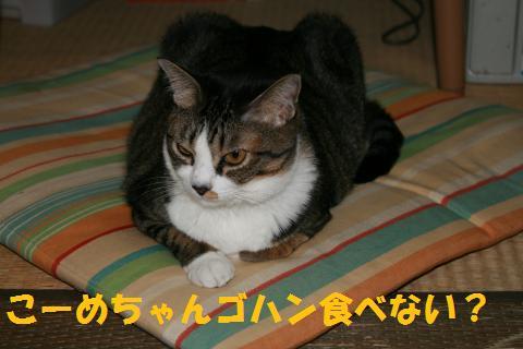 009_convert_20091001213716.jpg