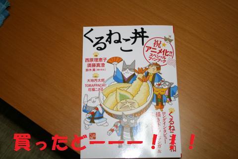 012_convert_20090917220546.jpg