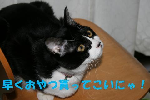 024_convert_20091031203256.jpg