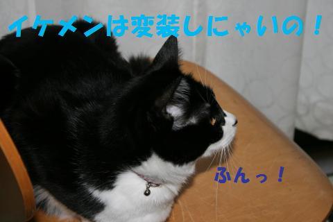 025_convert_20091031203414.jpg