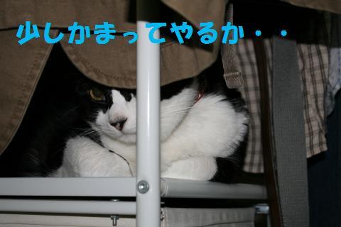 026_convert_20090901222441.jpg