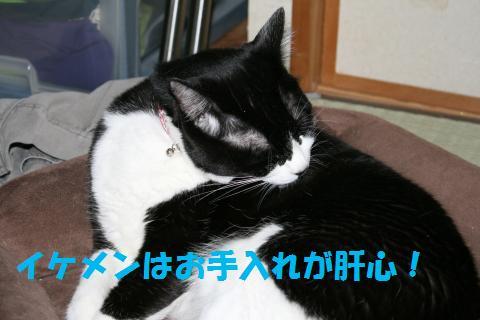 027_convert_20091001214204.jpg
