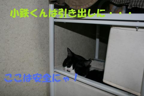 043_convert_20090830211843.jpg