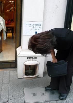 中華街散策02ーワンちゃんの水飲み場02