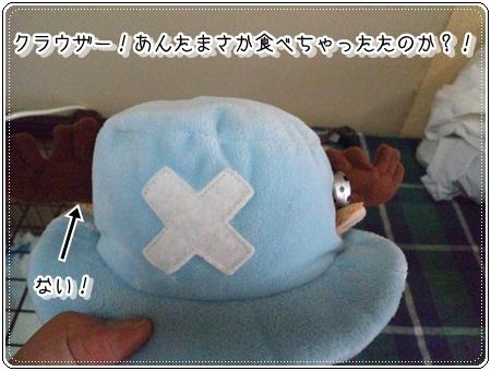 002_20110821092755.jpg