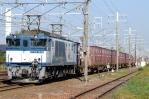DSC_8908-2011-10-29.jpg