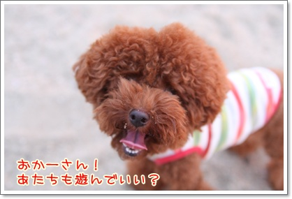 10_20090809005335.jpg