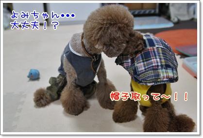 10_20090823222800.jpg