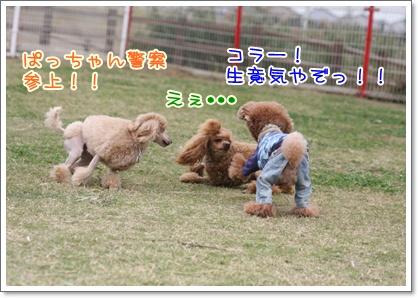 10_20091025230434.jpg