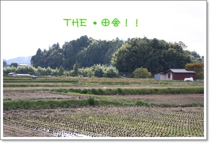 10_20091103235231.jpg