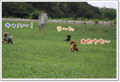 11_20090824222831.jpg