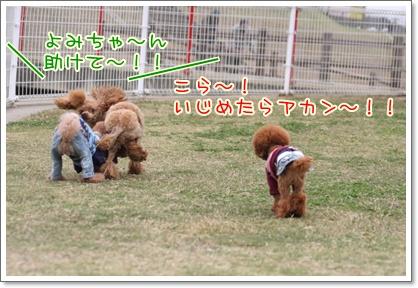 11_20091025230434.jpg