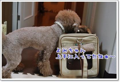 12_20091027184736.jpg