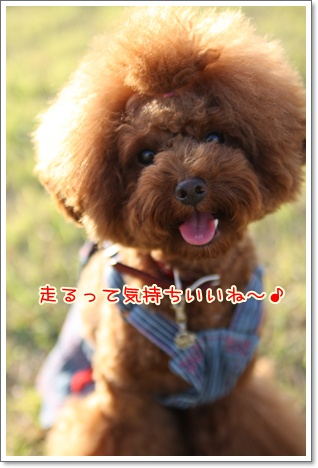 13_20091011113846.jpg