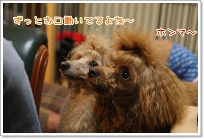 14_20090803010057.jpg