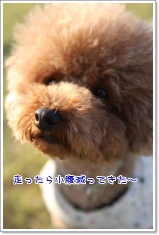 14_20091011113846.jpg