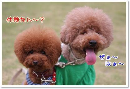 15_20090927201446.jpg