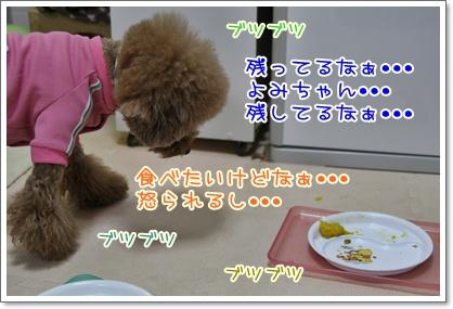 15_20091012124110.jpg