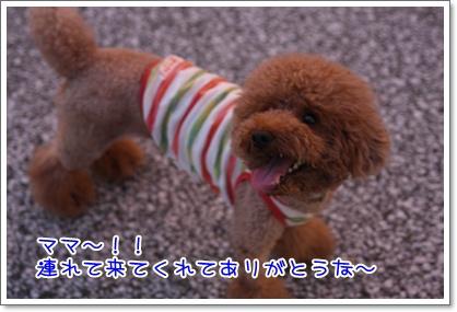 16_20090809010711.jpg